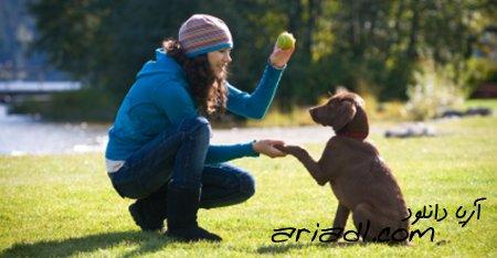 فیلم آموزش تربیت سگ - چگونه سگ در کنار شما سریع راه برود و از دستورات شما پیروی کند
