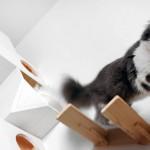 ایده خانه چوبی برای گربه های خانگی