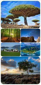 تصاویر پس زمینه خواستنی از طبیعت سری 193